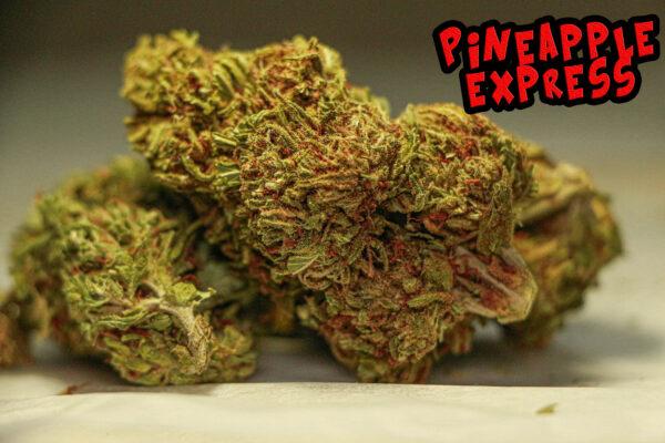 Pinneaple Express Calimen